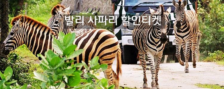 발리 자유투어-사파리&동물원&데브단 할인 티켓